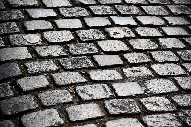 """Tom Boonen won meerdere keren de kasseiklassieker Parijs-Roubaix. Aan zo'n momenten hecht ploegleider Tom Steels heel wat waarde: """"Die emotie maakt de job de moeite waard."""" (Foto: Dustin Gaffke, Flickr)"""